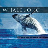 CD - Whale Song
